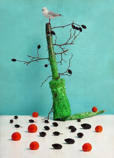 bodegon brocha con ramas y pajaro