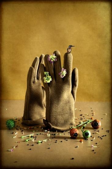 bodegon guantes con flores