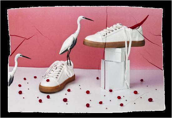 transferencia de emulsion de zapatillas blancas con guindilla roja