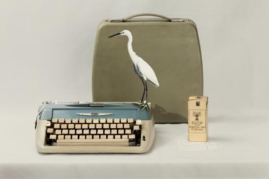 bodegon con maquina de escribir y palaro