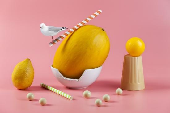 bodegon de melon amariilo con pajaro balanceandose