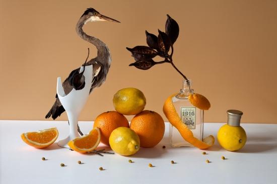 bodegon de citricos con colonia