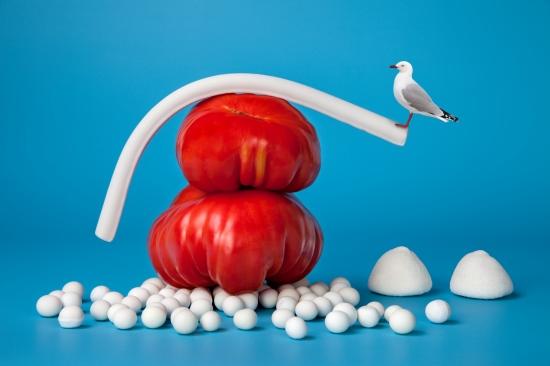 bodegon de dos tomates con pajaro balanceandose
