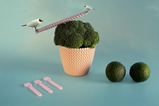 bodegon de pajaros balanceandose sobre brocoli