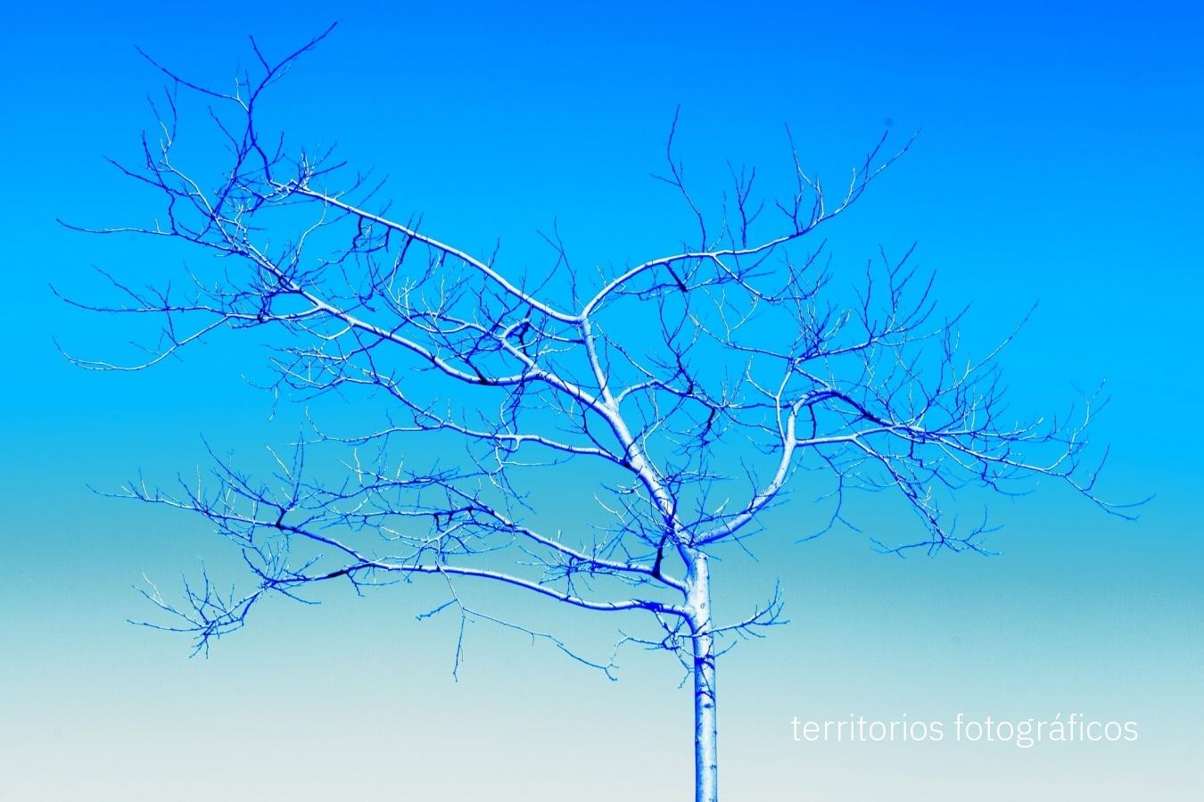 colours - territorios fotográficos