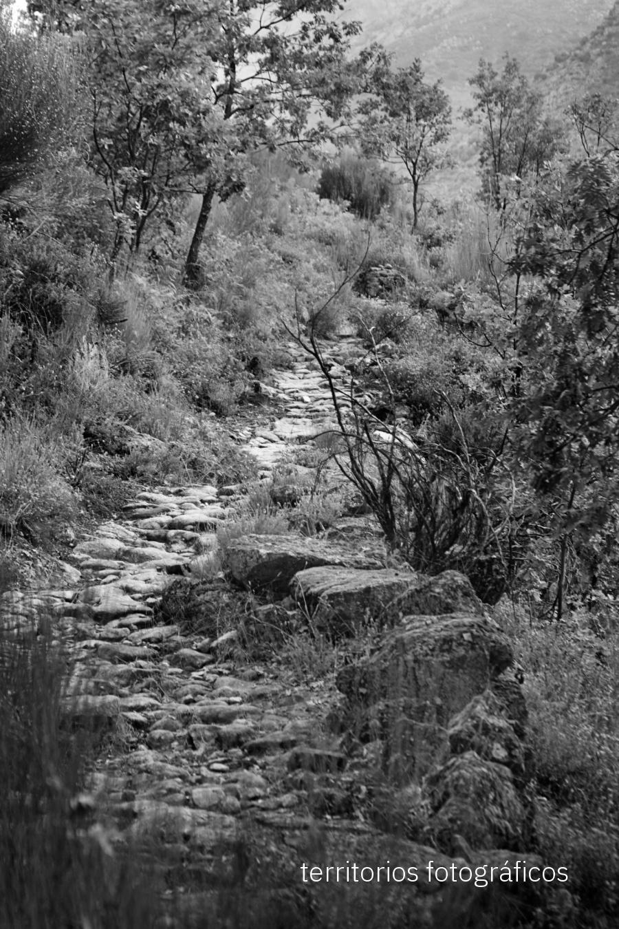 la Vera en blanco y negro - territorios fotográficos