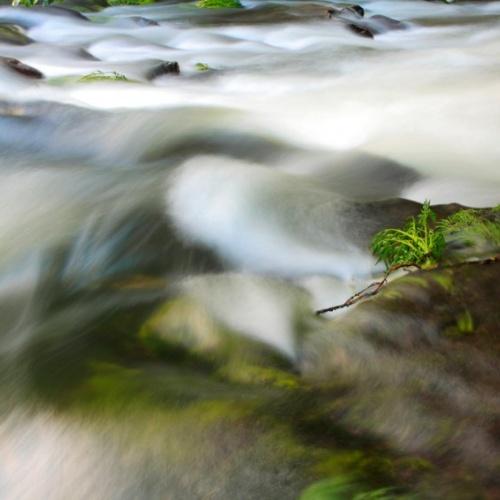 el agua y sus paisajes