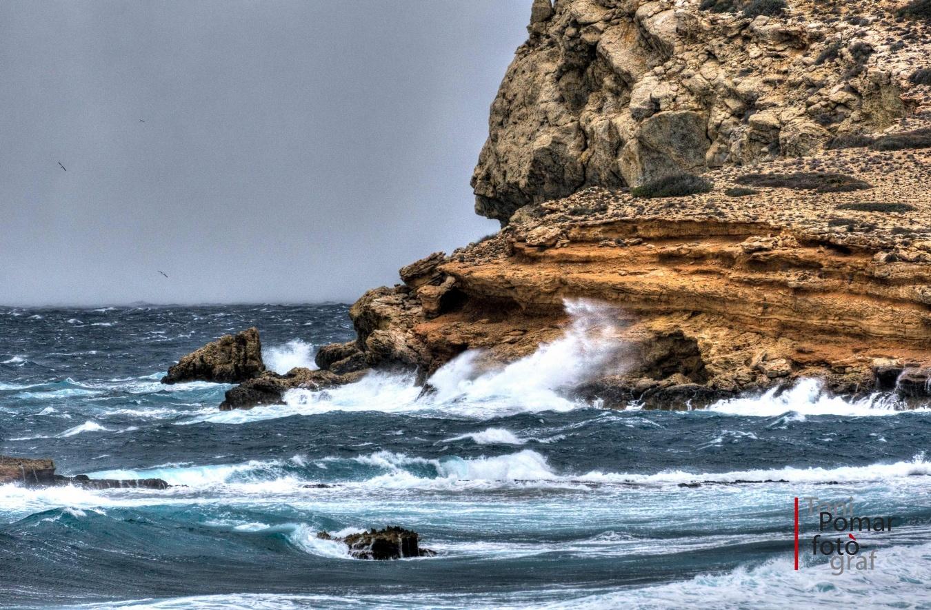 Temporal a l'illa des Bosc - A cel obert - Toni Pomar. A cel obert