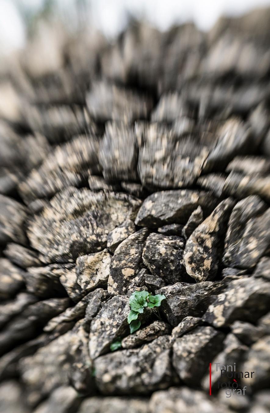 Brot de pedra seca - A cel obert - Toni Pomar. A cel obert