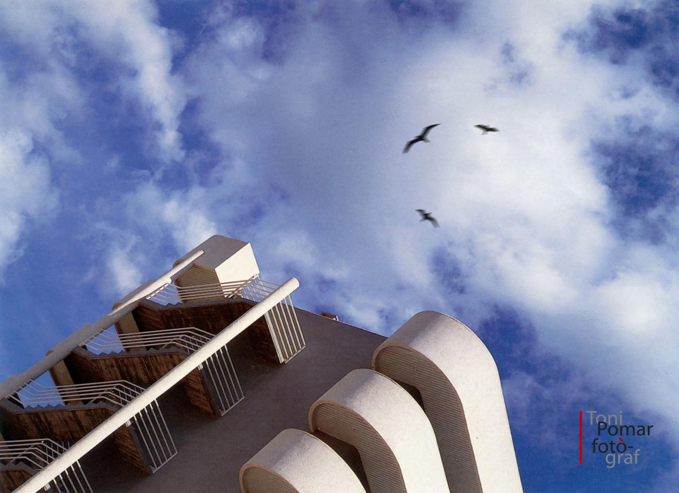 Volar de coloms i gavines per un camí planer - Eivissa as New York - Eivissa as New York