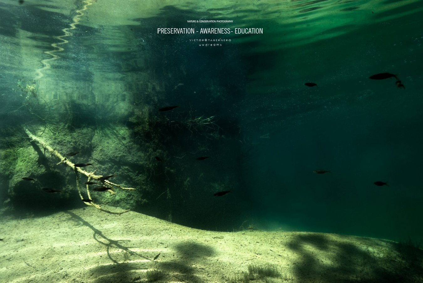 Viviendo en el rio - Wildlife Conservation Photography, UWDREAMS.COM