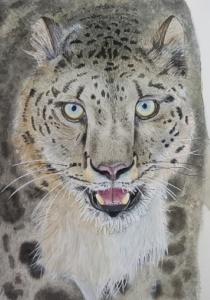 Leopardo de las nieves - 41x31cm