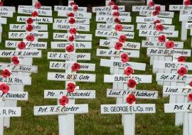 Cementerio militar. Stratford. Nueva Zelanda