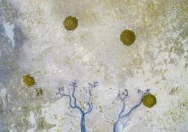 Abstracciones en la ría