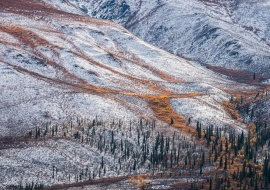 Fall - winter at Klondike. Dempster Highway. Yukon
