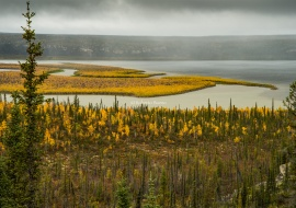 Campbell Lake, near Inuvik. Mackenzie River Delta. Northwest Territories