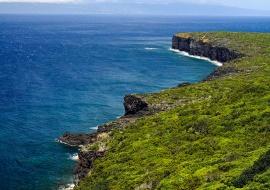 Volcanic coast. Ponta do Misterio. Pico Island