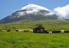 Volcán. Reserva Natural da Montanha do Pico