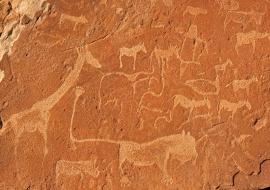 Animals engravings. Twyfelfontein, Namibia