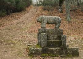 Verraco. La Alberca. Sierras de Béjar y Francia Biosphere Reserve