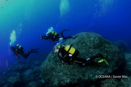 Alexandra Cousteau y buceadores de Oceana en Cala Galiota, Parque Nacional de Cabrera, islas Baleares, España. Actos para apoyar la ampliación del Parque de Cabrera. Octubre 2013.