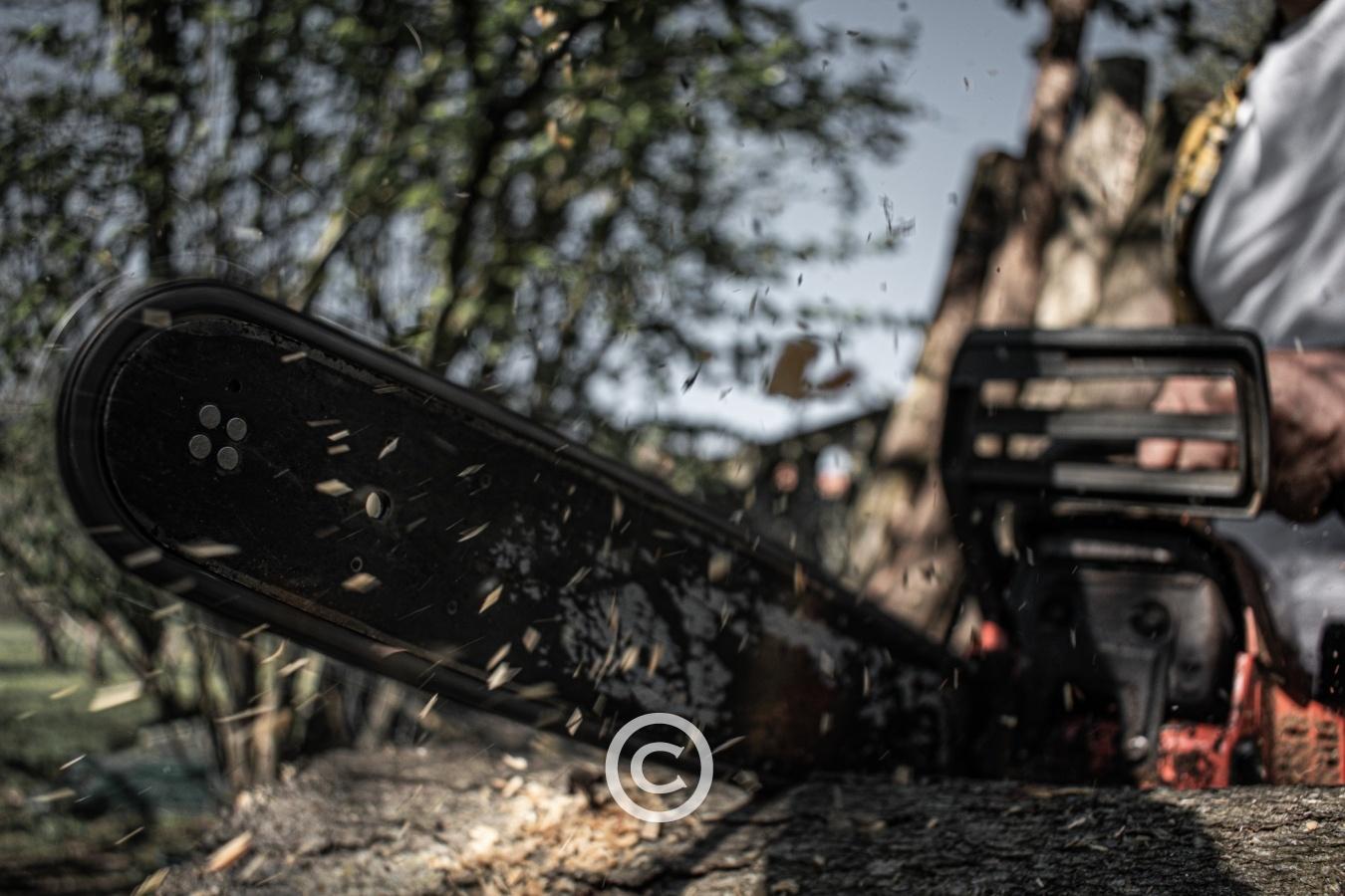 16 Tons - Fotografía creativa - Fotografía creativa - SAUL MENENDEZ | zoollpho