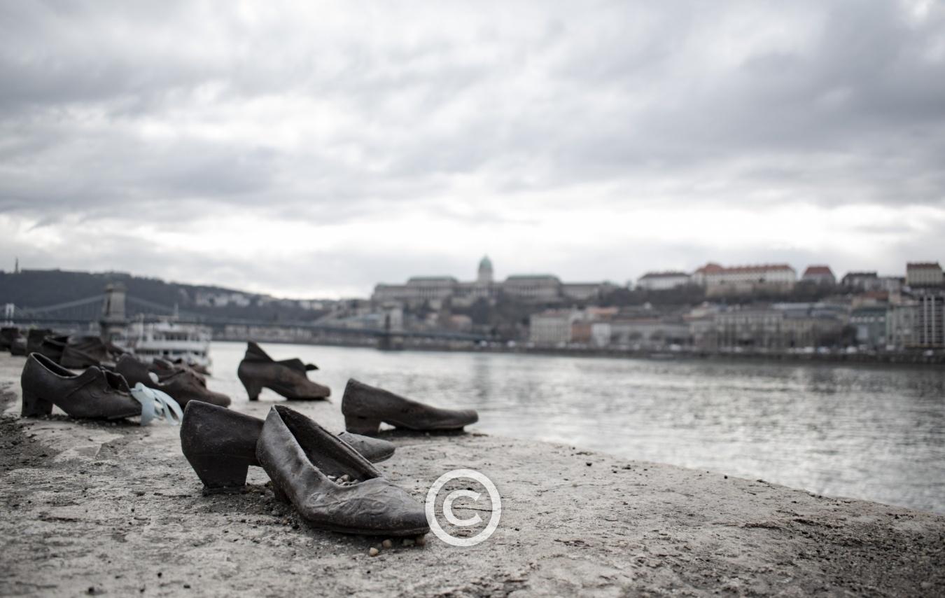 Budapest - Enero 2020 - Budapest - Enero 2020 - SAUL MENENDEZ | zoollpho