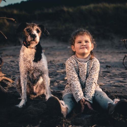Portraits and Photo Shoots